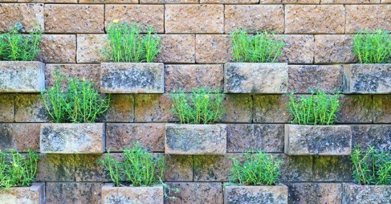 Ogrodzenia Betonowe Rodzaje I Zastosowanie Inspiracje I