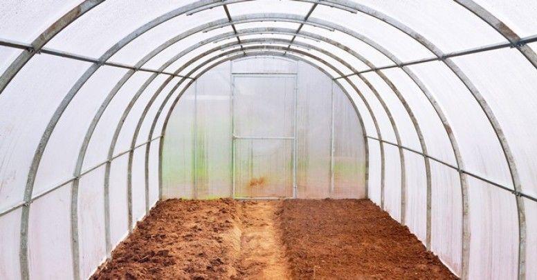 oficjalny dostawca przystojny gładki Szklarnia – budowa, podłoże, uprawa roślin - Inspiracje i porady