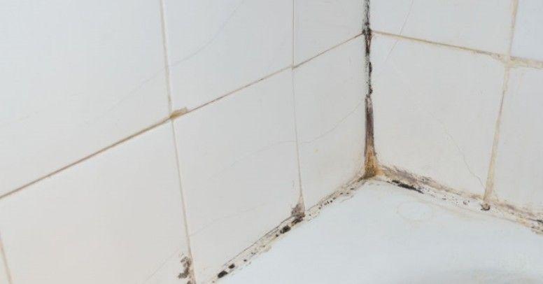 środki Pleśniobójcze Do łazienki Jak Je Stosować