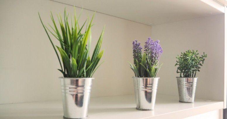 Sztuczne Kwiaty W Domu Tak Inspiracje I Porady