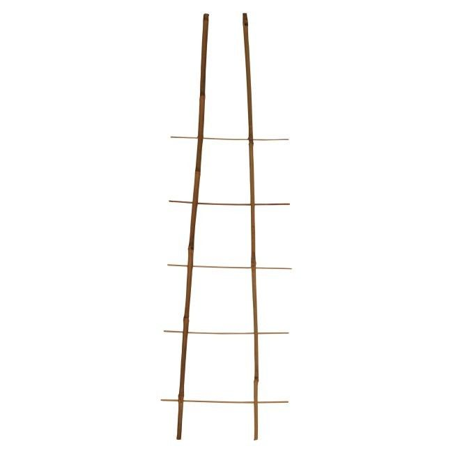 Drabinka Bambusowa 120 Cm Bambusy Akcesoria Doniczkowe