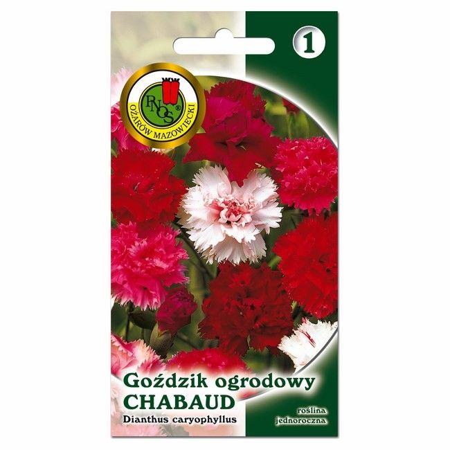 Nasiona goździk Chabud mieszanka