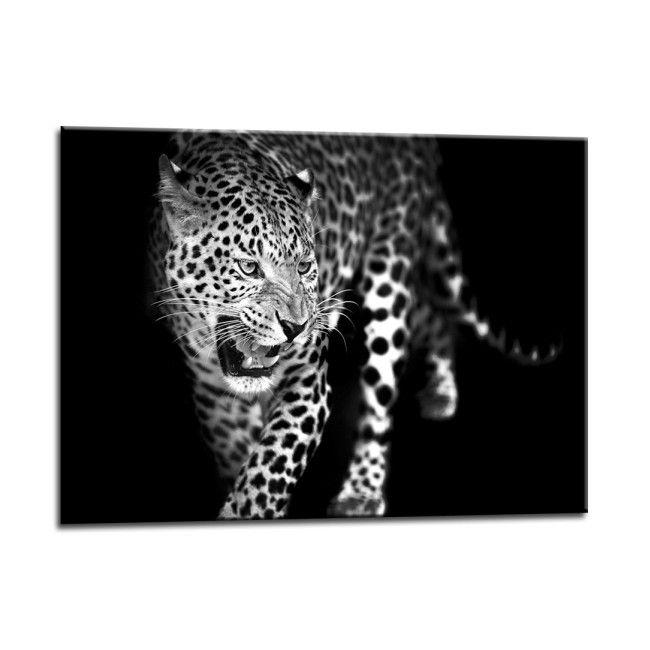 Obraz Glasspik Lampart 70 X 100 Cm Obrazy Obrazy I Ramiarstwo