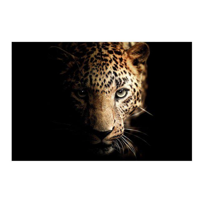Obraz Glasspik Leopard 70 X 100 Cm Obrazy Obrazy I Ramiarstwo