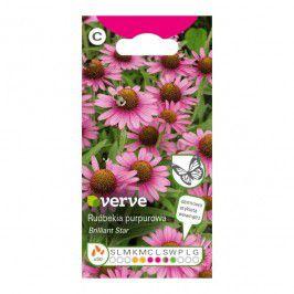 Nasiona rudbekia jeżówka Verve purpurowa