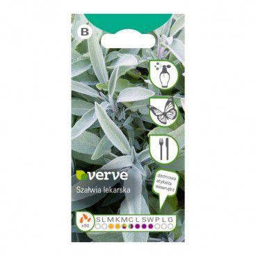 Nasiona szałwia lekarska Verve