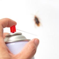 preparat owadobójczy