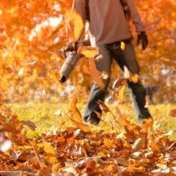 Odkurzanie jesiennych liści