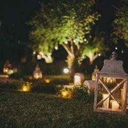 oświetlony ogród