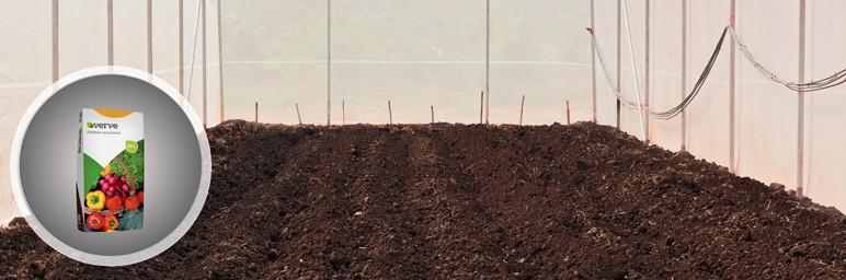 Podłoże do warzyw substrat Verve 50 l