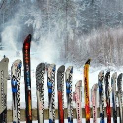 ogrodzenie z nart