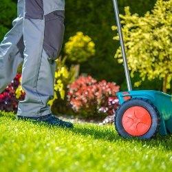 przygotowanie trawnika