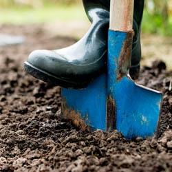 Dbanie o glebę