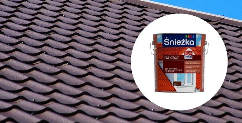 Malowanie Dachu Wybieramy Odpowiednia Farbe Inspiracje I Porady