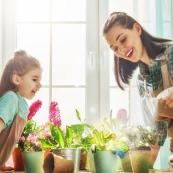 Mama z córką zajmują się roslinami doniczkowymi