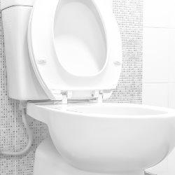 deska toaletowa