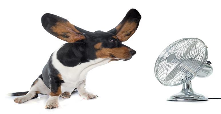 принцип работы вентилятора