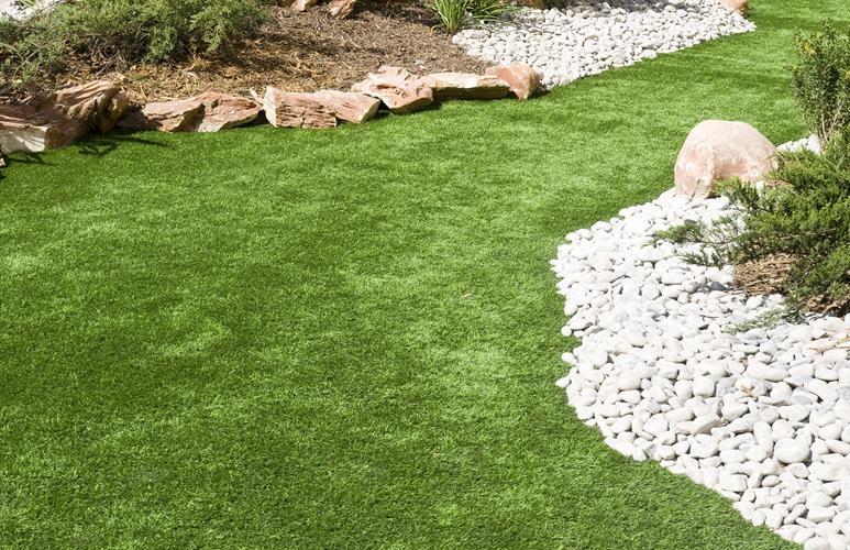 rodzaje trawy na trawnik