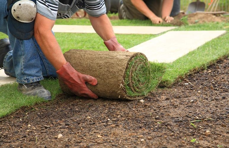 jak złożyć trawnik