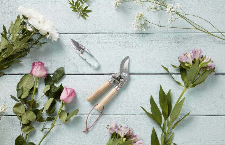 narzędzia potrzebne do pracy w ogrodzie