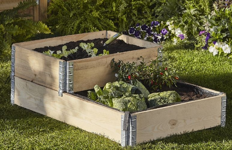 warzywa w skrzynkach