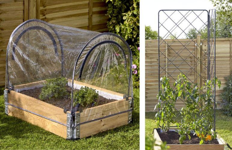 warzywniak w skrzynkach