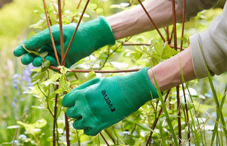 Rękawice lateksowe Verve ogrodowe zielone 7