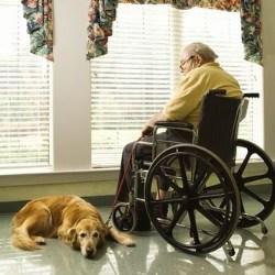 stolarka okienna dostosowana dla niepełnosprawnych