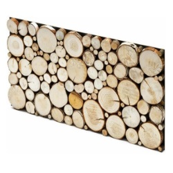 Panel_dekoracyjny Stegu Pure Castorama