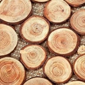 Jak Przygotowac I Wykorzystac Drewniane Krazki Inspiracje I Porady