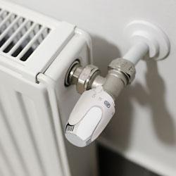 Głowica termostatyczna S2 M28 x 1,5