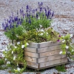 skrzynia z drewna na kwiaty