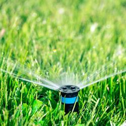 zraszacz trawy