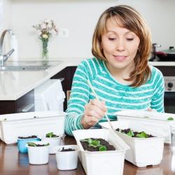 kobieta rozsadza rośliny w domu