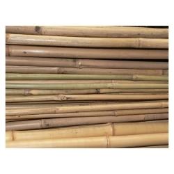 bambus do uprawy roślin