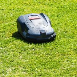 roboty do trawy