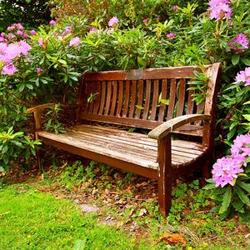 ławka ogrodowa w drewnie