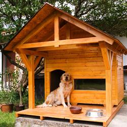 domek dla dużego psa, buda, pies