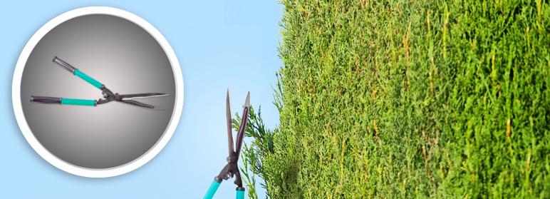 Nożyce do żywopłotu Greenmill
