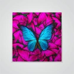 Obraz Glasspik Butterfly Red 20 x 20 cm