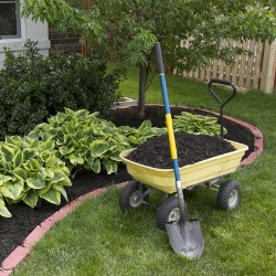 porządkowanie ogródka