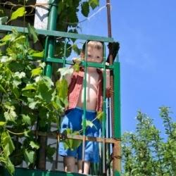 dziecko wychyla się na balkonie