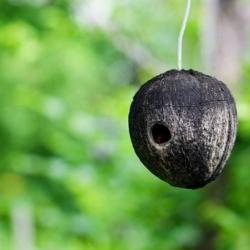 okrągłe gniazdo dla jaskółek