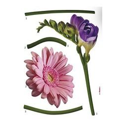 Naklejka Kwiat 70 x 50 cm