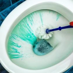 czyszczenie miski WC