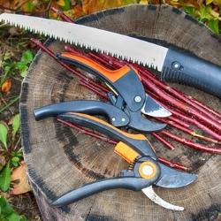 narzędzia do cięcia gałęzi