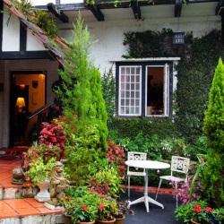 ogród vintage