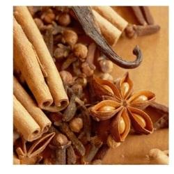 wanilia castorama