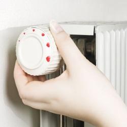 zawór termostatyczny