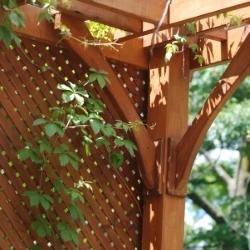 ogrodzenie pergoli